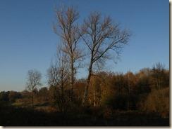 Broekom: zicht van aan de watermolen richting Voort