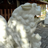 lions statues at the Kotoku gate in Kamakura, Kanagawa, Japan