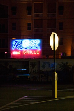 Neons-of-Florida-12