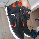new kicks from Holland in Toronto, Ontario, Canada