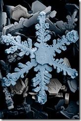 400px-Snow_crystals_2b