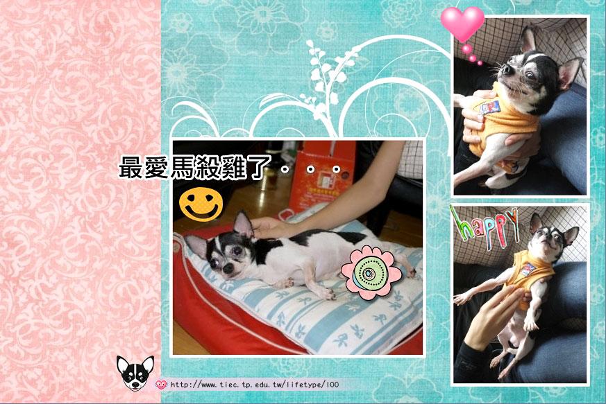 201007minibook-dog05.jpg