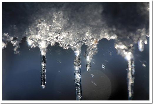 121224_snow_022