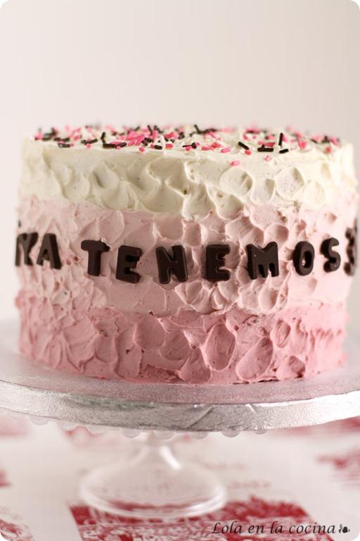 tarta-sombreada1