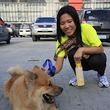 Pet Express Doggie Run 2012 Philippines. Jpg (262).JPG