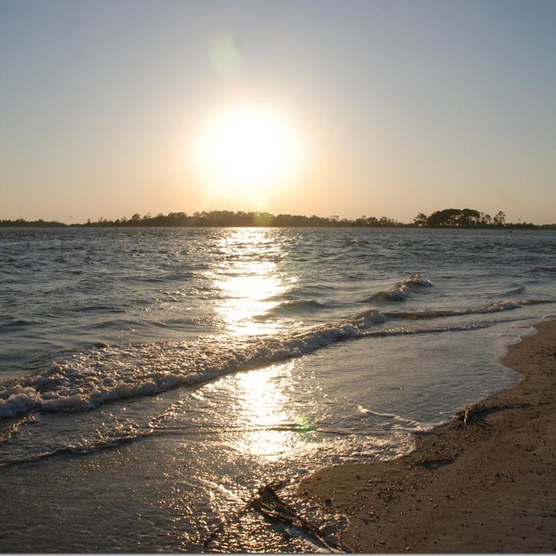 MARY KAY ANDREW'S TYBEE ISLAND