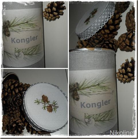 kongler-horz