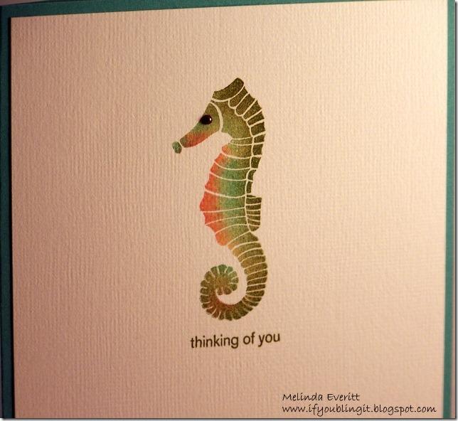 seahorse11-001
