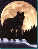 lobos imagenesifotos (2)