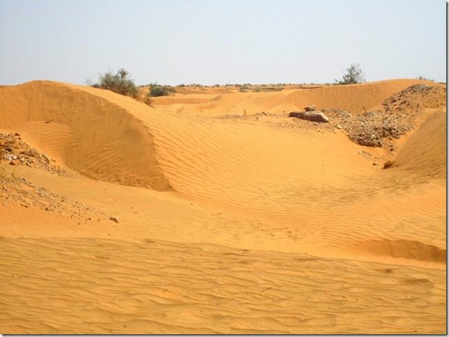 Djerba Ausflug 027