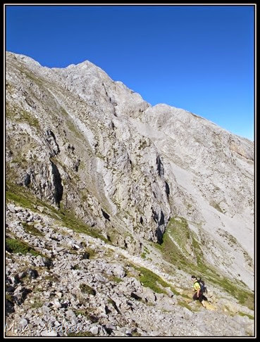 Picos 841