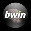 bwin y padel pro tour juntos 2011[3]