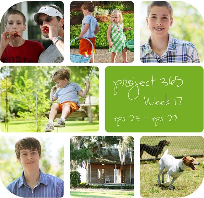 4week17