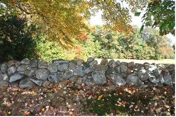 stone_wall_fields