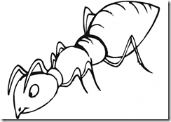 insects_coloring_pages (13)