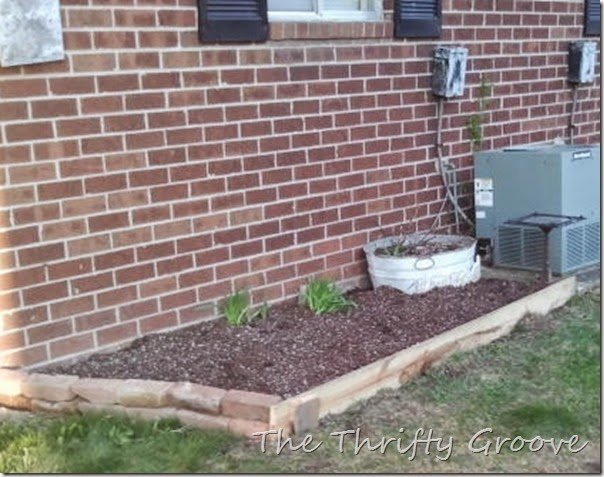 starting flower bed