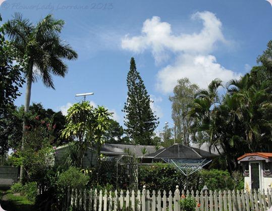 06-16-caravan-garden