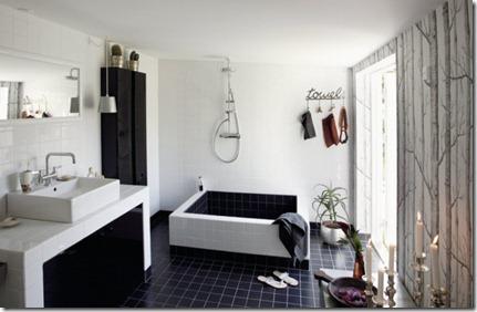 Baños Modernos con Tina5