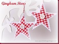 Gingham Stars 5    _jpg