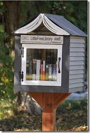 Little Free Library Book Roof