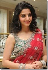 Actress Vedhika at Paradesi Movie Press Meet Stills