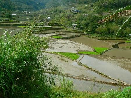 Orezarii in muntii filipinezi