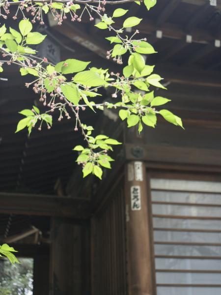 20120611162011674.jpg