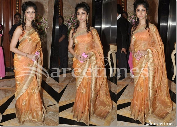 Orange_Handloom_Silk_Saree
