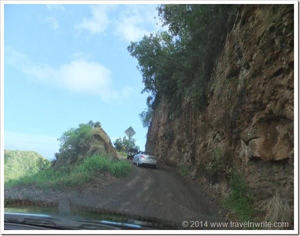 Maui2014SF 049