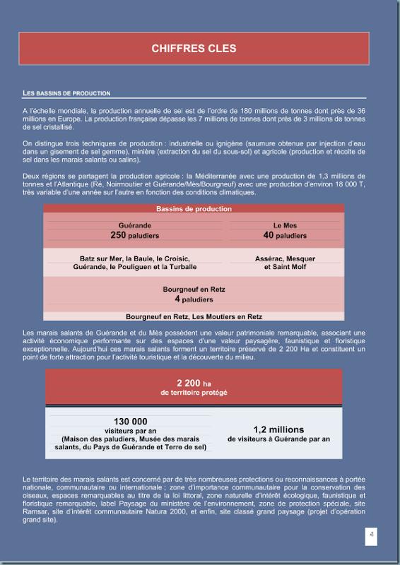 diagnostic_salicole_ca44_2011_page_006