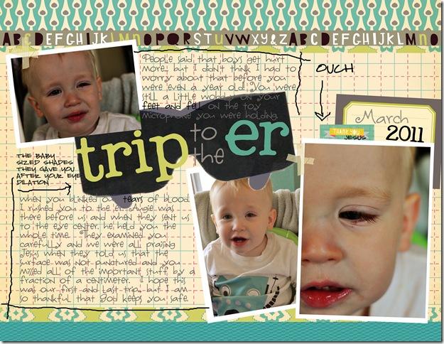 triptoer310