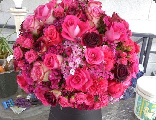 pixies petals part 2downsized_0226001445