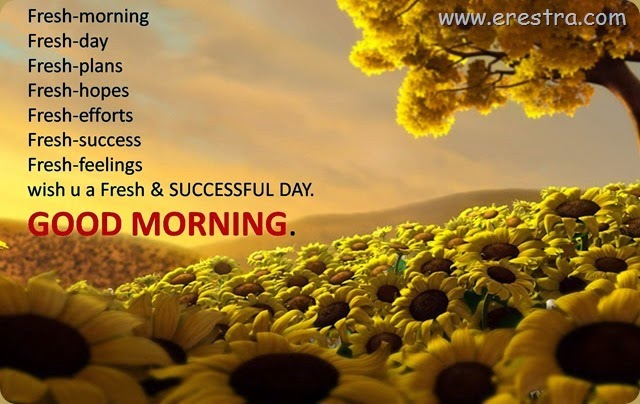 new-quotes-hd-good-morning-with-flowers-free