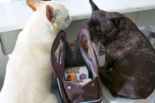 And of course, food went into the upper storage area of the Doggie Day Care Kit.