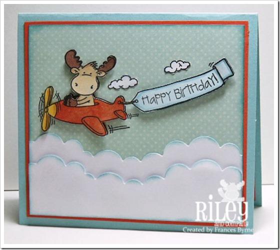 RIley2211-Plane-wm