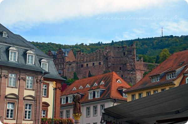 Heidelberg (12)
