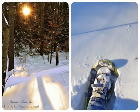 snowshoe walk 1