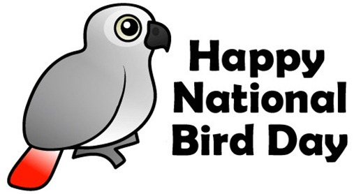 national bird day january 5