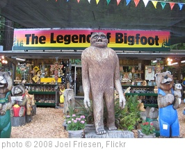 'The Legend of Bigfoot' photo (c) 2008, Joel Friesen - license: http://creativecommons.org/licenses/by-sa/2.0/