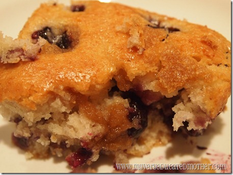 @mvemother Blueberry Coffee Cake 6