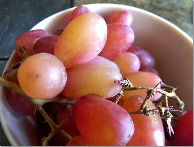 grapes-public-domain-pictures-1 (2235)
