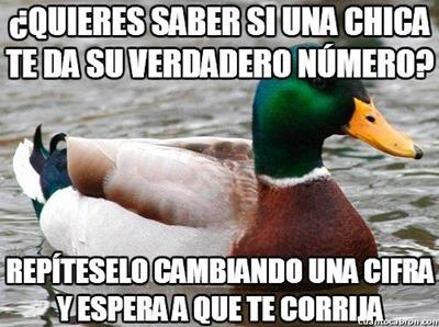 consejos del pato (9)