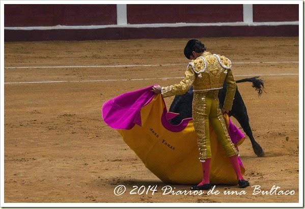 Toros 2014 (2)-16