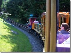 2013.07.11-075 train du cirque