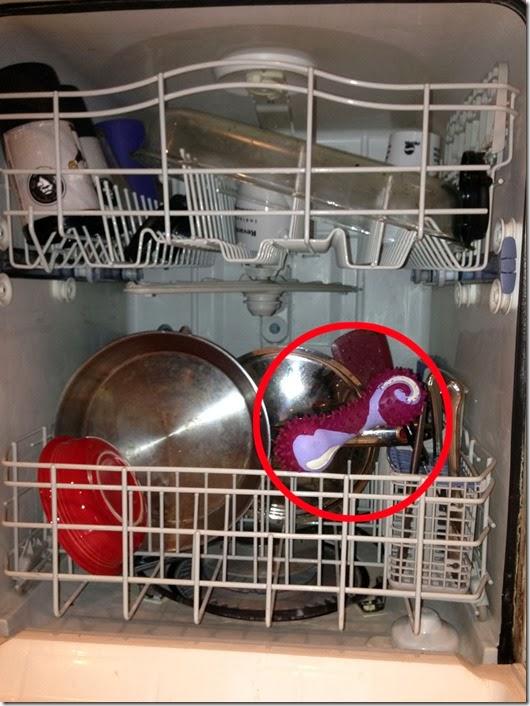 dishwasher bone