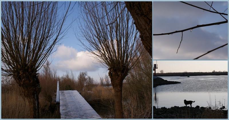 4-5-12-2009, sinterklaas 20091