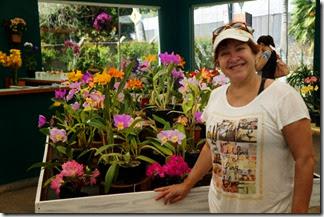 Festival de Orquídeas em Teresópolis 8