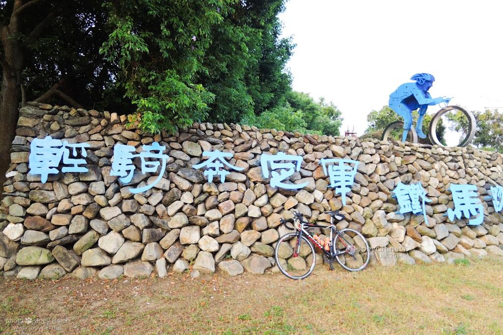 土鳳梨 139縣道 微熱山丘