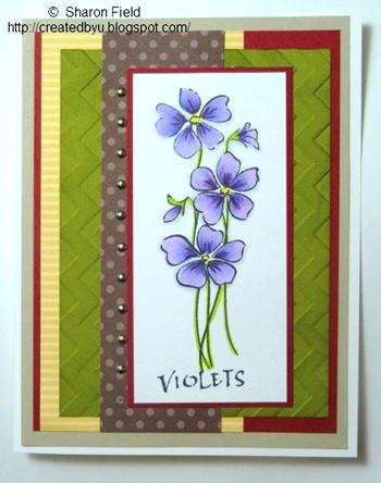 1.violetswithunusualcolorssandcreatedbyu