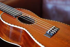 mainland mahogany concert ukulele